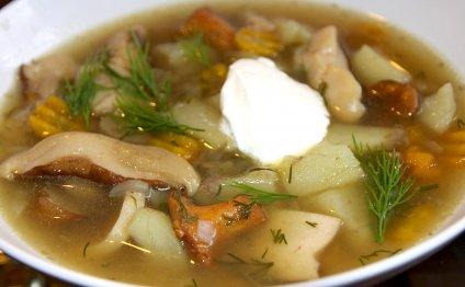 Грибной суп с курицей в