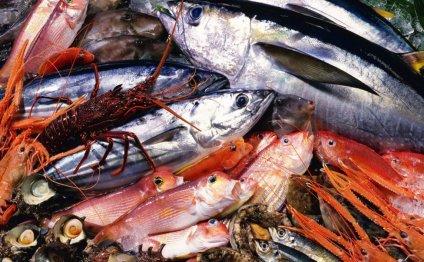 Предварительная обработка рыбы